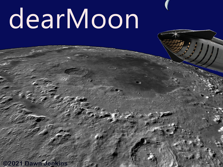 Dear Moon collage
